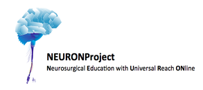 NEURONproject